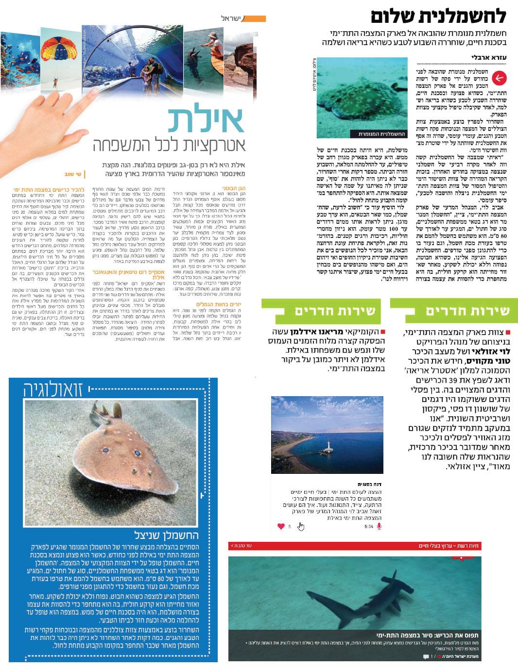 המצפה התת ימי בעיתון